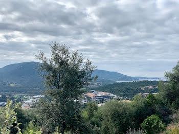 terrain à Viggianello (2A)