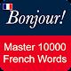 French Vocabulary Master (app)