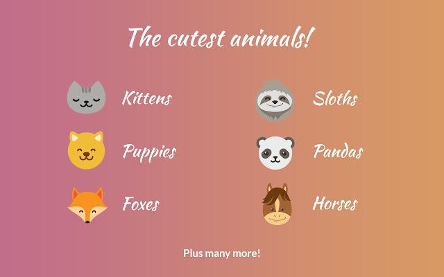Cute Animal Tab New Tab Theme