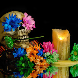 Day of the Dead by Shawn Thomas - Artistic Objects Still Life