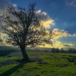 by -. Phooneenix .- - Landscapes Sunsets & Sunrises