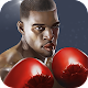 Punch Boxing 3D (game)