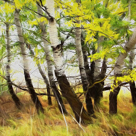 Alders by Gaylord Mink - Digital Art Things ( plants, alders, trees )