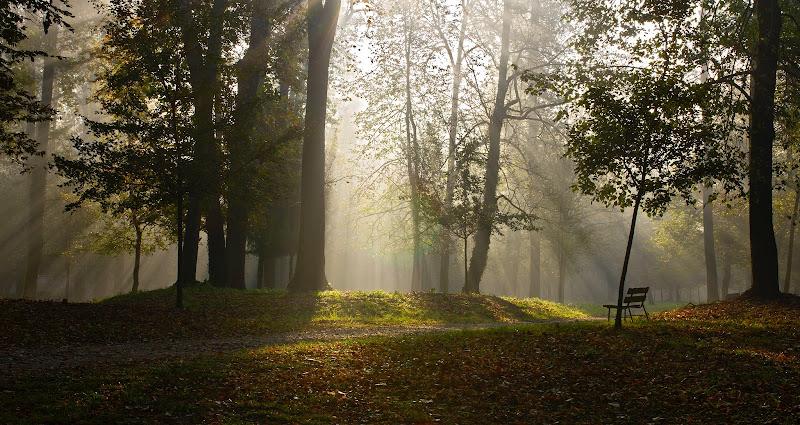 Autunno al parco di wolfman1908