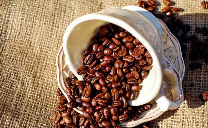 Arabica Coffee Beans, The History of Arabica Coffee Beans