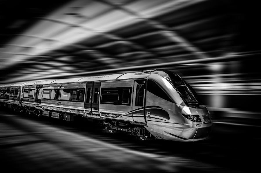Gautrain by Sheldon Reddy - Transportation Other ( gautrain, south africa, train, nikon, fast )