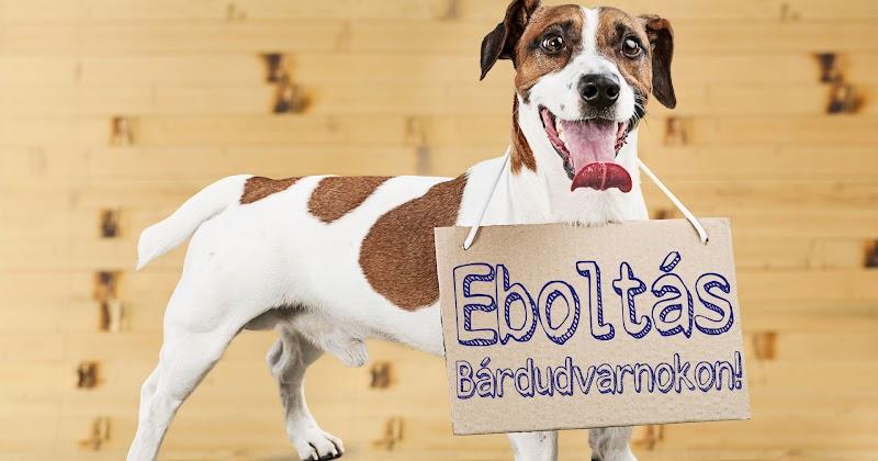 Eboltás Bárdudvarnokon 2018.04.16-17