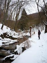 Photo: Óbányai-völgy fokozottan védett Természetvédelmi Terület