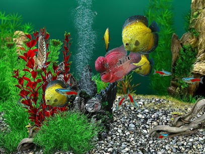 AquaLife 3D  Apk Download For Android and Iphone 8