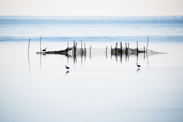 Zona di pesca di Peter_Sossi