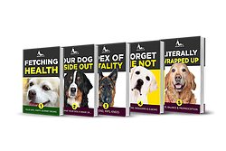 Wagging For Life Aging Dog Vitality