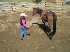 Photo: By putting a slight pressure on the ring rope, I can move the loop longer or shorter, and under the tail. As the horse moves forward, willing and without fear, there is relaxation in the ring rope.