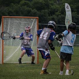 Lacrosse match Louisville, KY by Dennis McClintock - Sports & Fitness Lacrosse ( lacrosse game, goalie, goal, lacross  louisville, youth sports )