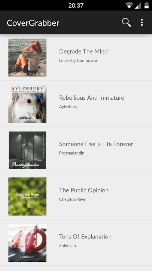 Album Art Downloader- screenshot