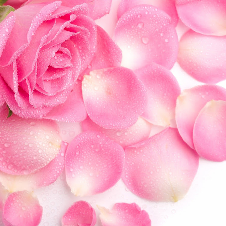 Rose Petals - 30ml Alcohol-free Perfume