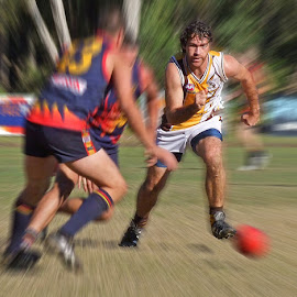 Noosa Aussie Rules by Bruce Porter - Sports & Fitness Australian rules football