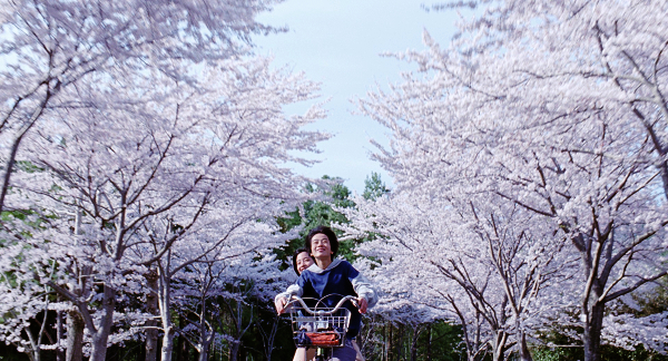 電影:《海街日記》是枝裕和導演,綾瀨遙、長澤雅美主演
