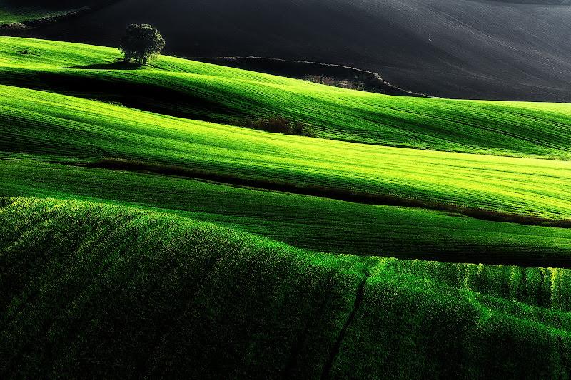 Verdi sinuosità di prometeo