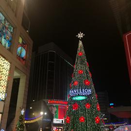 Christmas Mood by Steven De Siow - Public Holidays Christmas ( christmas tree, christmas lights, streetphotography, christmas, street photography,  )