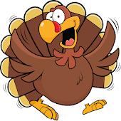 Thanksgiving Turkey Run Free!