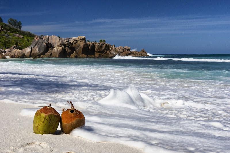 Coconuts splash di Roberto Simonazzi