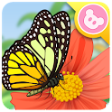 Butterfly - Insect World icon