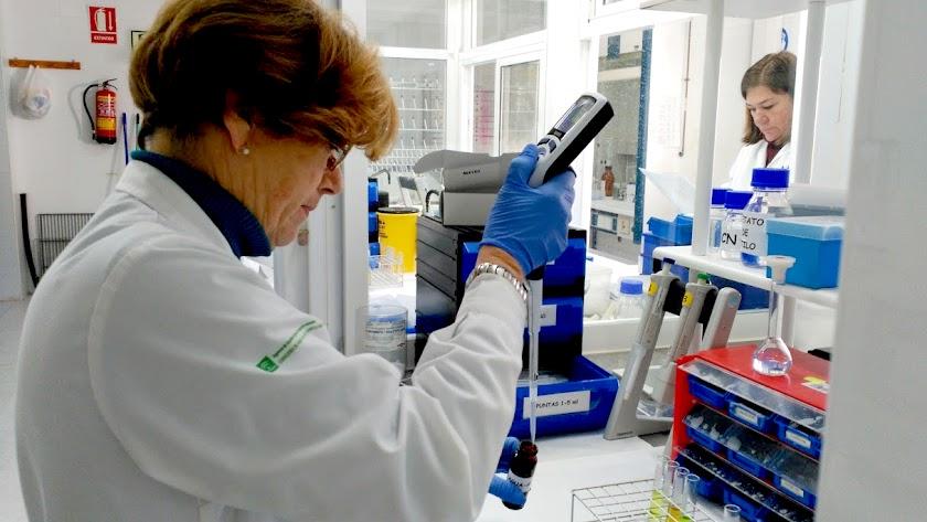 La Consejería destina 7,5 millones a los laboratorios agroalimentarios y pesqueros de Andalucía.