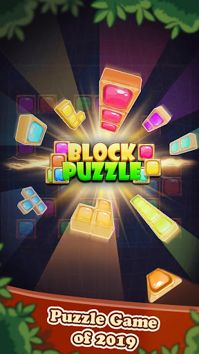 Block Puzzle 2020: Jewel Brick Tetris apkdebit screenshots 12