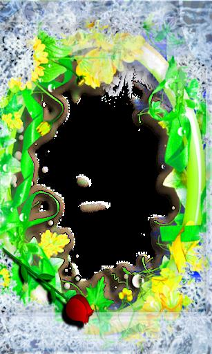 bahamas Photo flower Frames