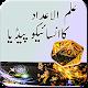 Ilm Ul Adad or Number ka Encyclopaedia icon