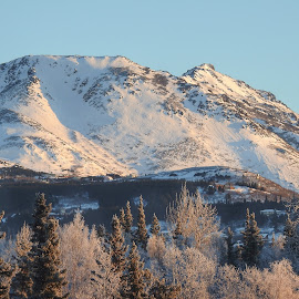 Flat Top Mountain by Patricia Phillips - Landscapes Mountains & Hills ( alaska mountains chugach range flattop )