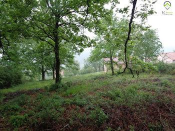 terrain à Burlats (81)