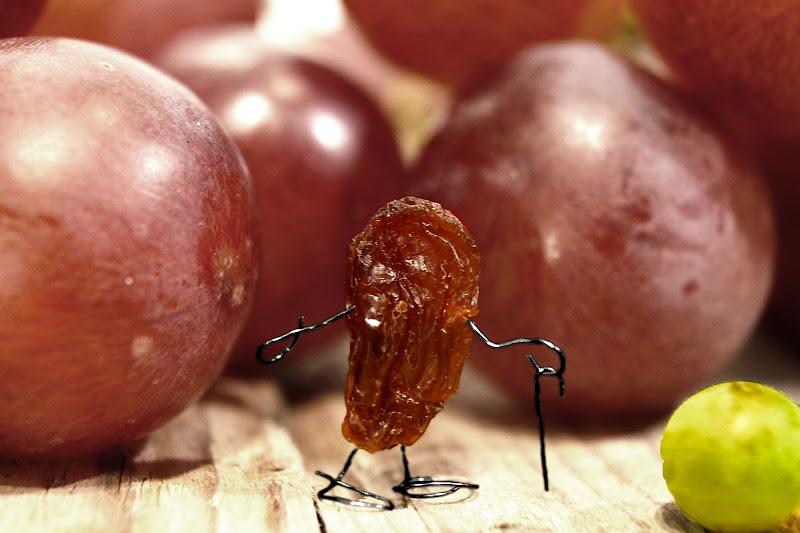 L'uva passa di Ari