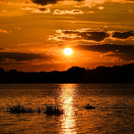 Sunset by Mike Hotovy - Landscapes Sunsets & Sunrises