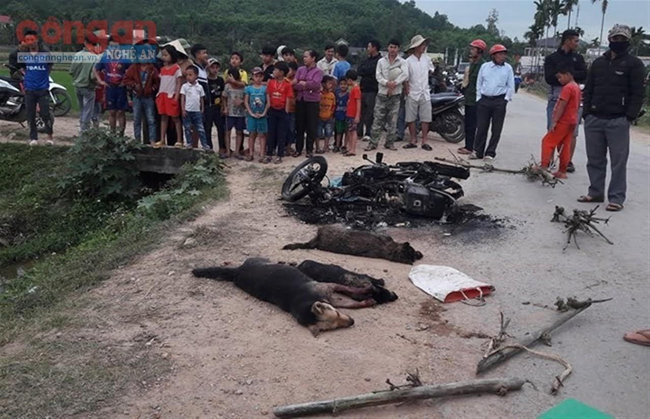 Hiện trường vụ đánh thương vong 2 nam thanh niên trộm chó xảy ra                        vào ngày 27/2 tại xã Mã Thành, huyện Yên Thành