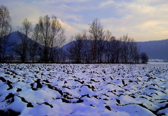 La neve attutisce ogni suono di Josephine