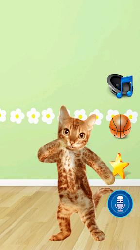 ダンスの話猫