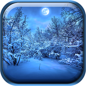 download Winter Night Live Wallpaper apk