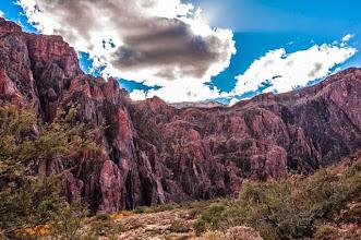 Photo: Bottom of the Grand Canyon Nation Park, Arizona, USA