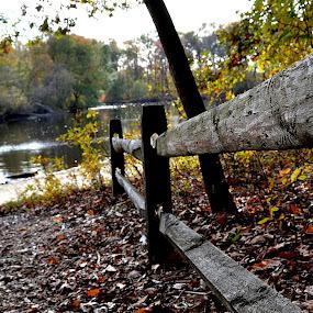 by Jamie Auletta - City,  Street & Park  City Parks (  )