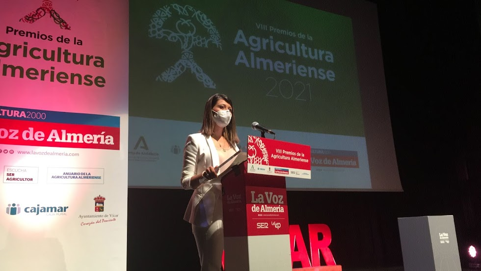 Ángeles Martínez, vicepresidenta segunda de la Diputación Provincial de Almería.