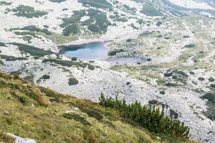 Lacul Ghereşu, foto Marius