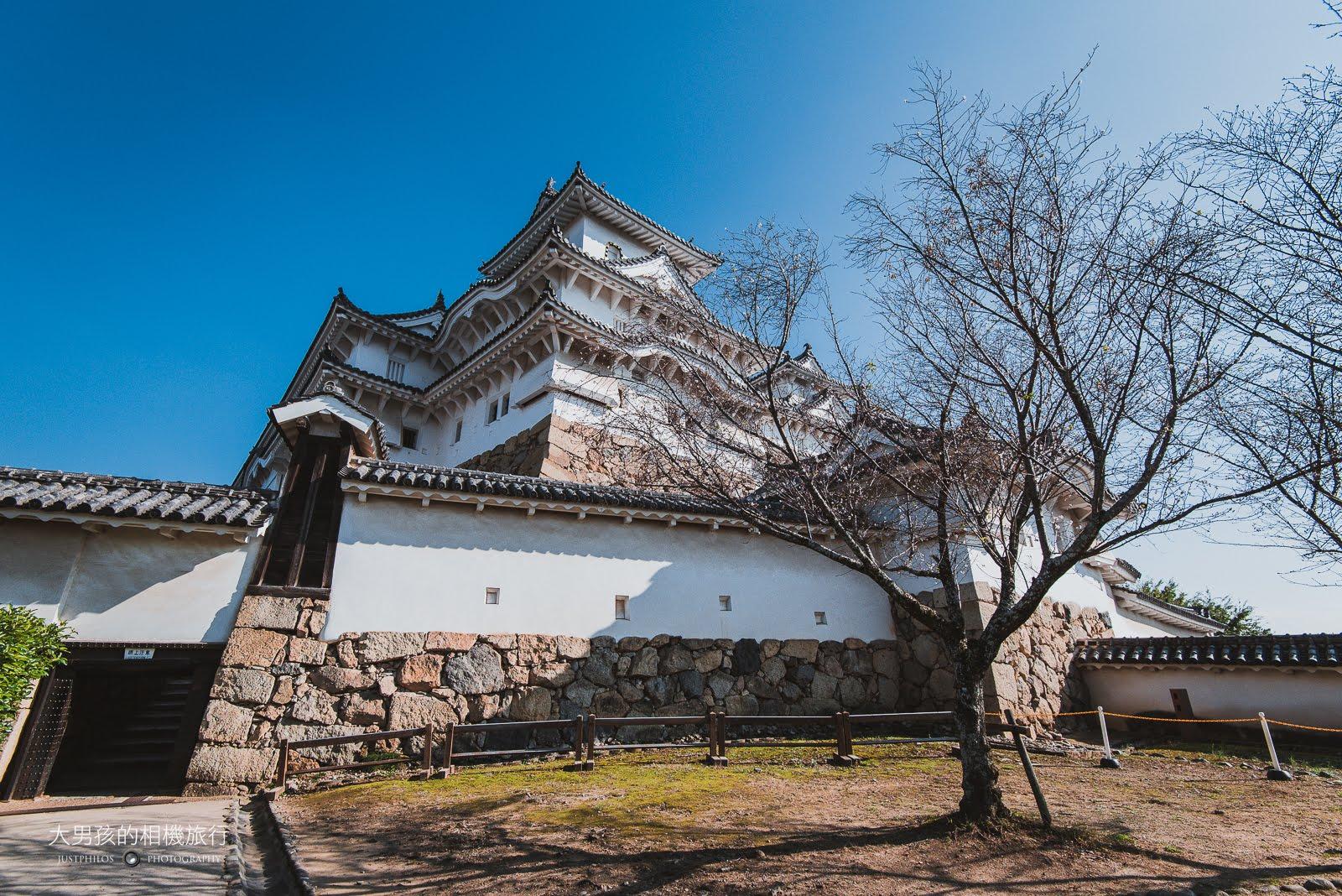 姬路城也是賞櫻名所,不過非花季的殘枝還是把姬路城點綴的相當出色。