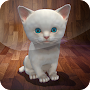 Live Kitten Tom Survival AR 3D