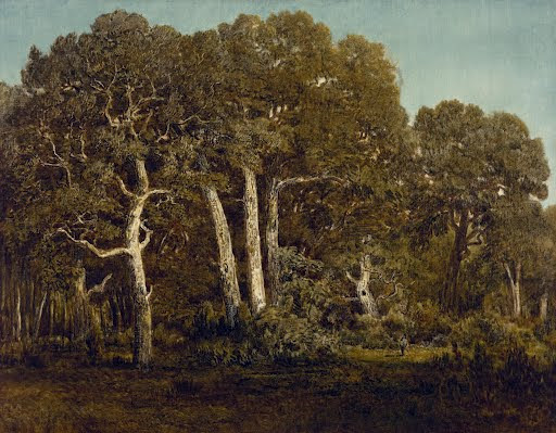 The Great Oaks of Old Bas-Bréau - Théodore Rousseau - Google Arts & Culture