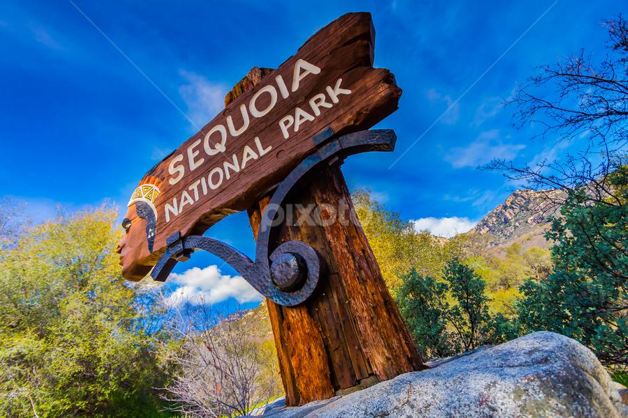 Start of the Trip by Ken Kun-Wei Liu - Travel Locations Landmarks ( sierra national forest, california, sequoia national park )