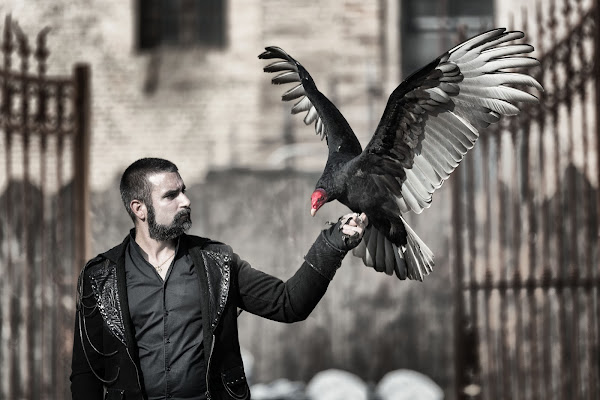 l'uccello del malaugurio di Rino Lio
