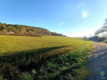 terrain à Bligny-sur-Ouche (21)