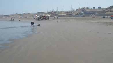 Photo: Playa Poza de Lisas y Complejo Turistico