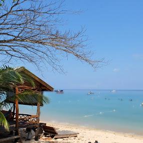 Tioman island resort by Hendrik Cuaca - Landscapes Travel
